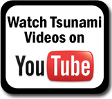 Tsunami Youtube Playlist